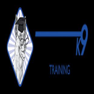 intelligent-k9-training