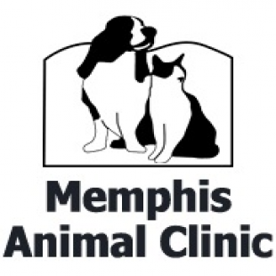 best-pet-grooming-memphis-tn-usa