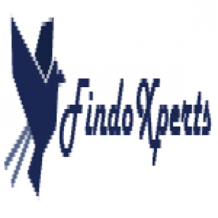 findo-experts