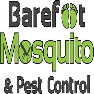best-pest-control-dallas-tx-usa
