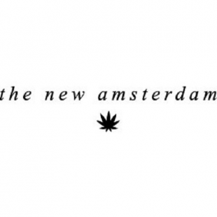 the-new-amsterdam