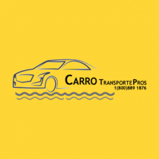 carro-transporte-pros