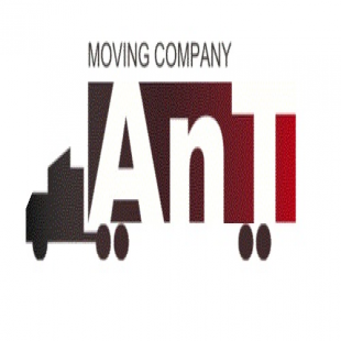 ant-moving-company