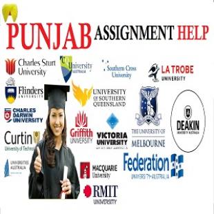 punjab-assignment-help-FFH