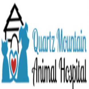 best-animal-hospitals-scottsdale-az-usa