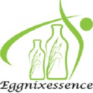 eggnix-essence