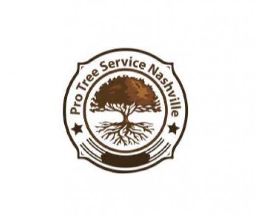 top-tree-service-nashville-tn-usa