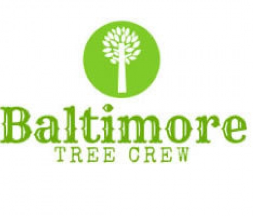 best-tree-service-baltimore-md-usa