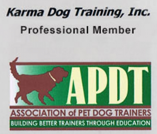 best-animal-training-plano-tx-usa