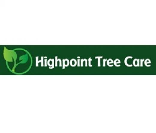 best-tree-service-houston-tx-usa