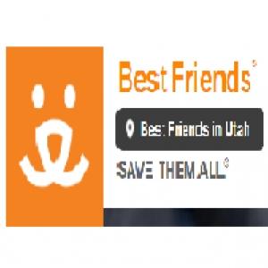 best-animal-rescue-midvale-ut-usa