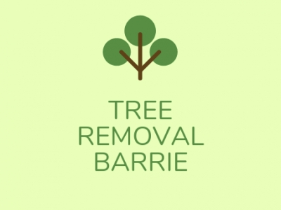best-tree-service-barrie-on-canada