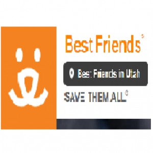best-animal-rescue-salt-lake-city-ut-usa