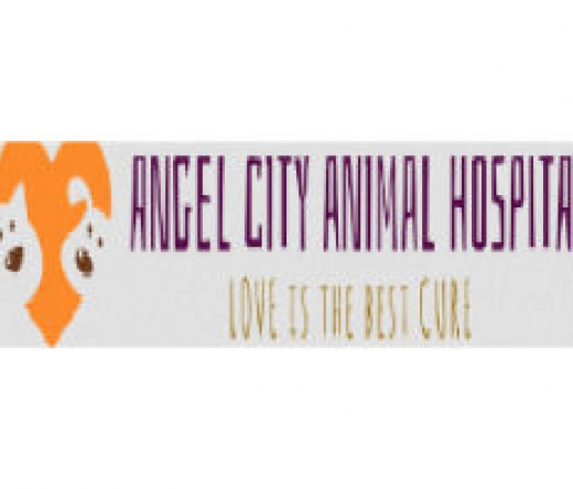 best-veterinarians-los-angeles-ca-usa