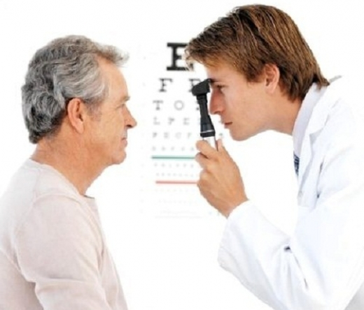 best-optometrists-tampa-fl-usa