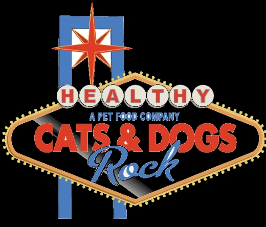 cats-and-dogs-rock