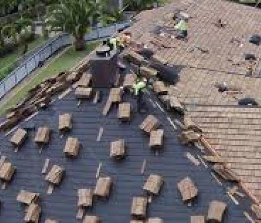 theodore-roof