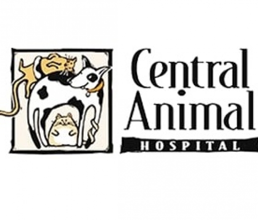 Central-Animal-Hospital-on-Pinellas-Point