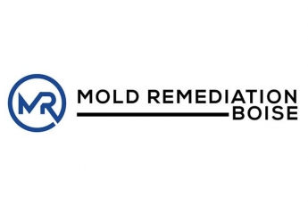 best-mold-mildew-inspection-boise-id-usa