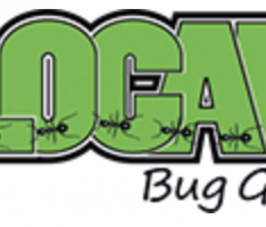 best-pest-control-temecula-ca-usa