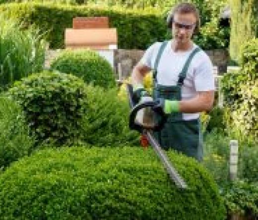 best-lawn-maintenance-peachtree-city-ga-usa
