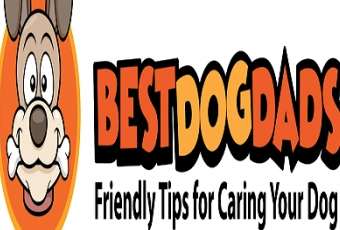 best-pet-grooming-weston-fl-usa