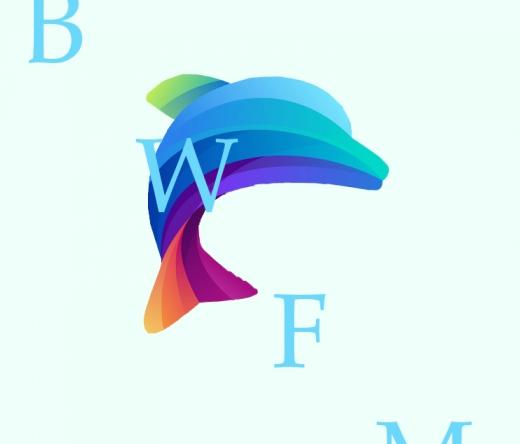 best-web-design-north-fort-myers-fl-usa