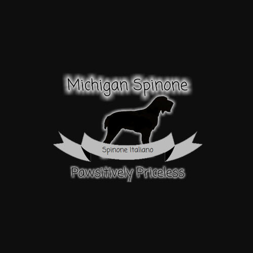 michigan-spinone