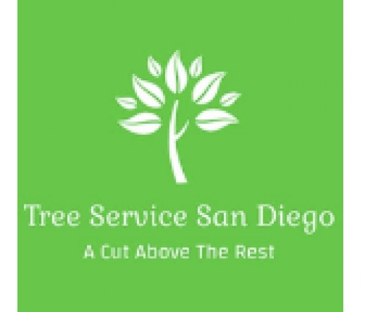 best-tree-service-san-diego-ca-usa