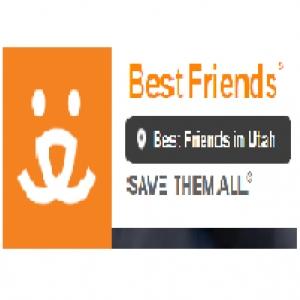 best-animal-rescue-bountiful-ut-usa