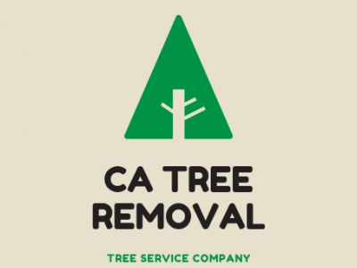 best-tree-service-toronto-on-canada