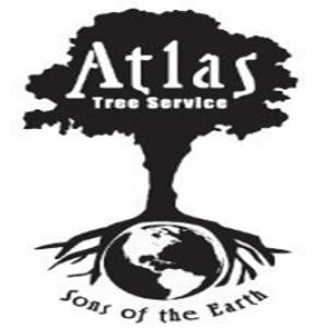 best-arborist-cottonwood-heights-ut-usa