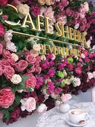 best-coffee-tea-beverly-hills-ca-usa