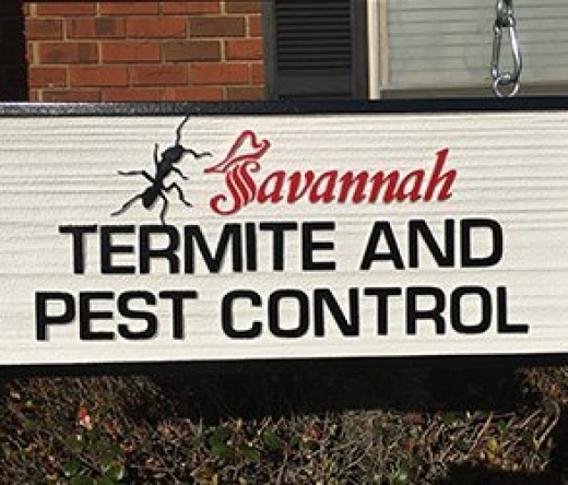 best-pest-control-savannah-ga-usa