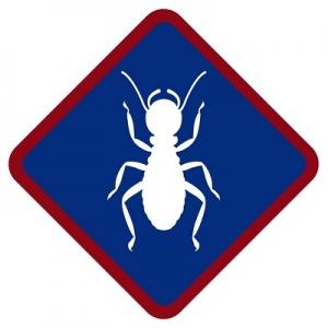 best-pest-control-canyon-lake-ca-usa