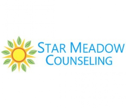 Star-Meadow-Counseling