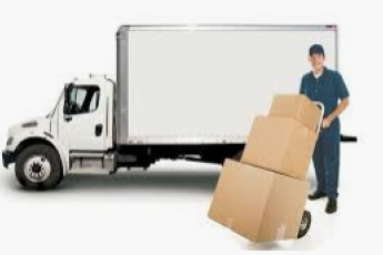 best-movers-office-tampa-fl-usa