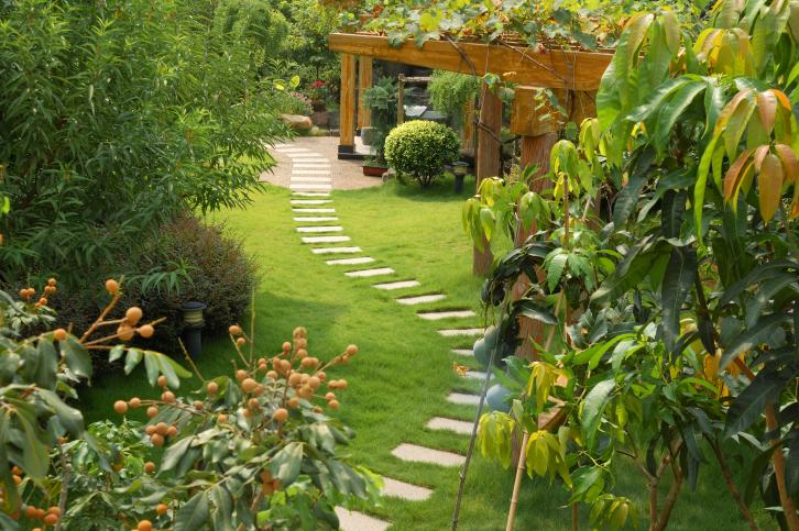 jose-landscaping