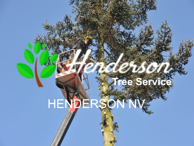 henderson-tree-service