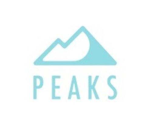 peaks-digital-marketing