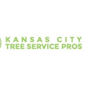 best-tree-service-kansas-city-mo-usa