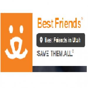 best-animal-rescue-saratoga-springs-ut-usa