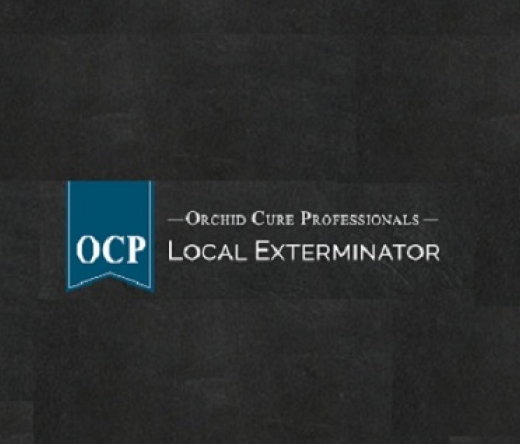 ocp-bed-bug-exterminator-dallas-tx-bee-removal