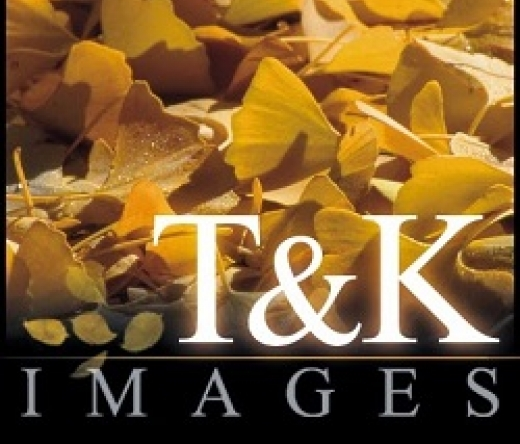 T-and-K-Images-Fine-Art-Photography-Prints