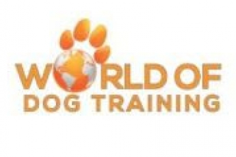 best-pet-training-huntington-beach-ca-usa