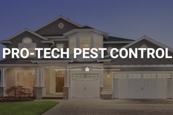 best-pest-control-las-vegas-nv-usa