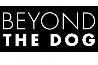 Beyond-the-Dog-LLC