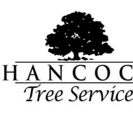 top-tree-service-knoxville-tn-usa