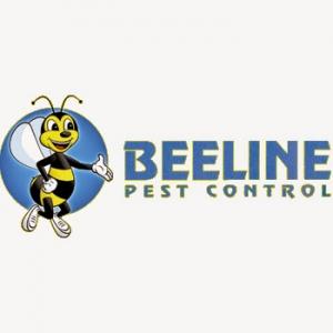 best-pest-control-san-antonio-tx-usa