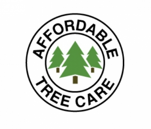 best-tree-service-riverton-ut-usa